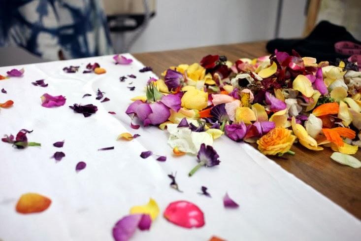 Sophia-moreno-bunge-Cara-Marie-Textiles-Gardenista.jpg
